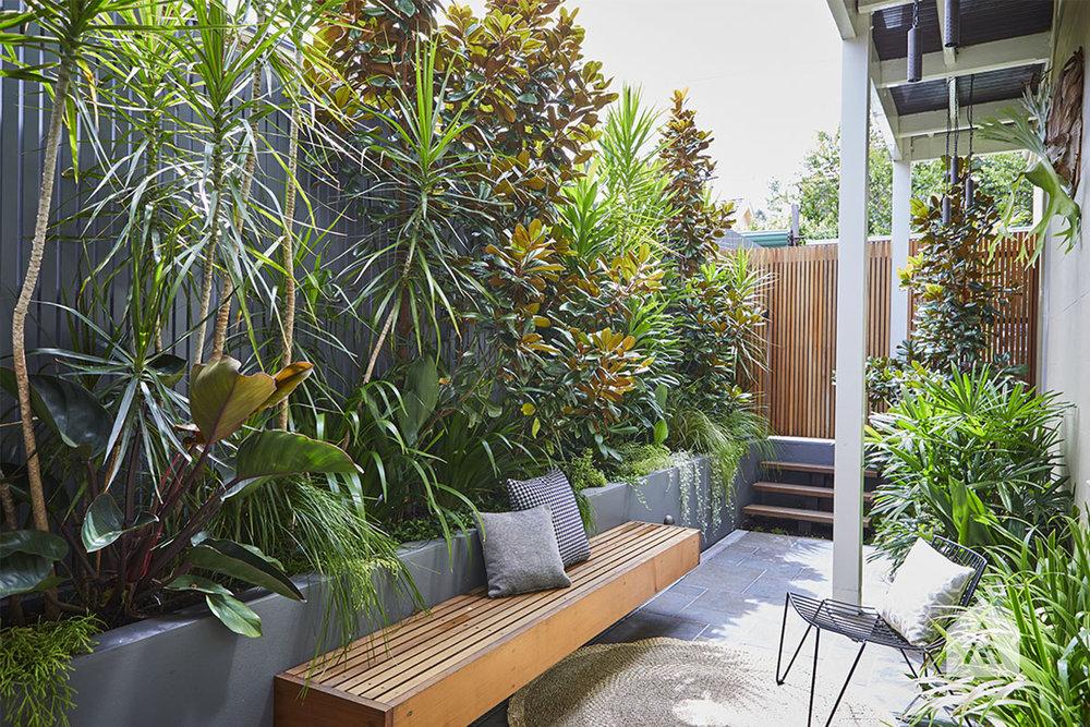 © Adam Robinson Design Stanmore Landscape Design Project 09.jpg