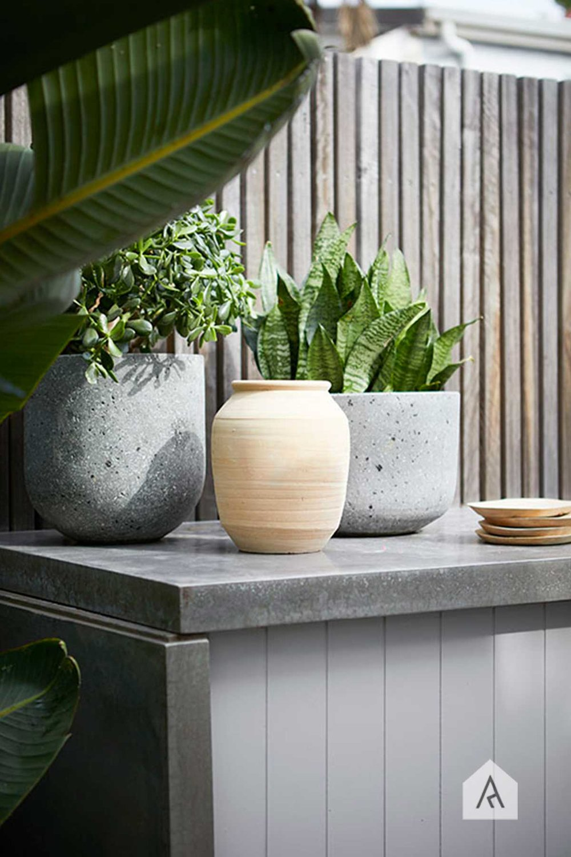 ©-Adam-Robinson-Design-Bondi-Garden-03.jpg
