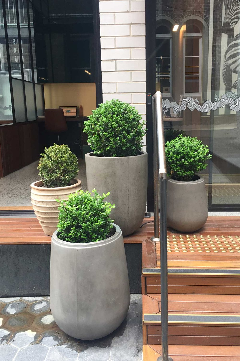Featuring the 'Gavitella' pot by Moderno ARD, a collaboration between Adam Robinson Design and Garden Life.