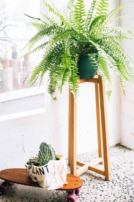 ©-Adam-Robinson-Design-Timber-Plant-Stand-04.jpg