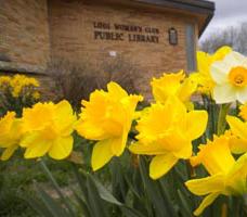 Lodi Public Library pic.jpg