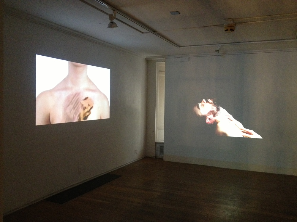"Evanston Art Center Biennial Opening ""When there was joy"" next to Dan Paz great video pieces."
