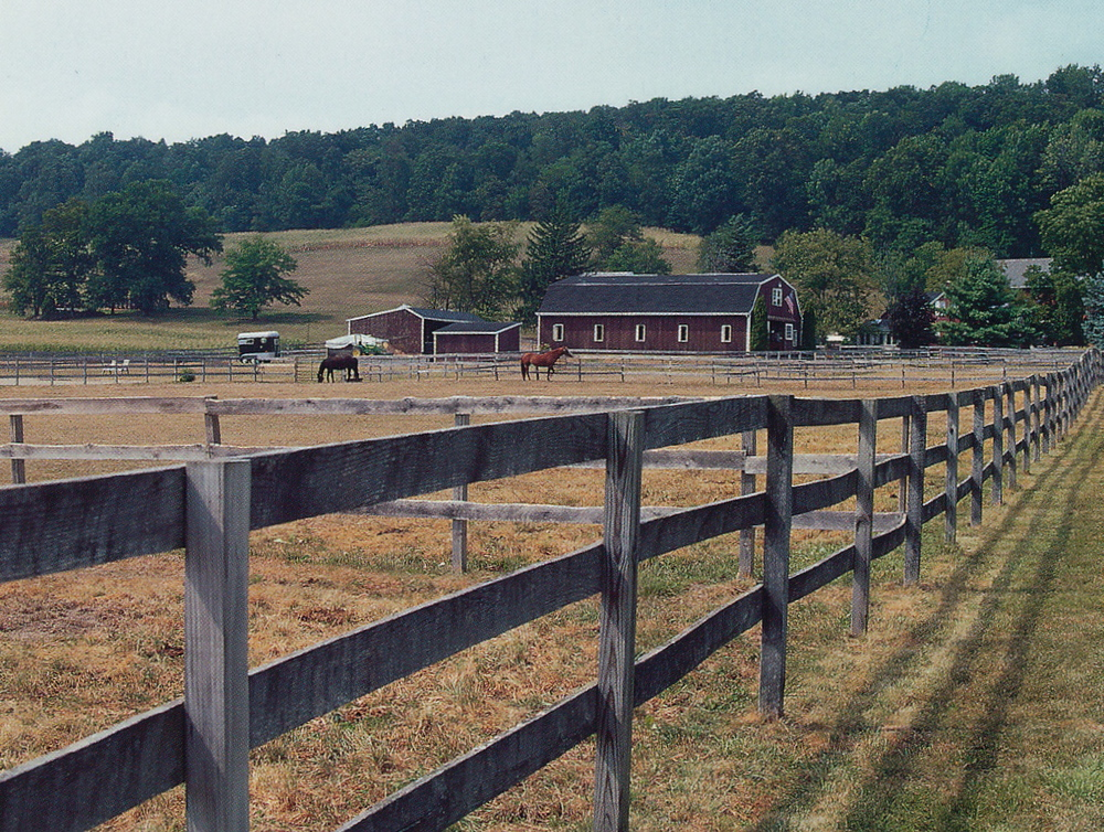 Our farm in Hellertown, Pennsylvania