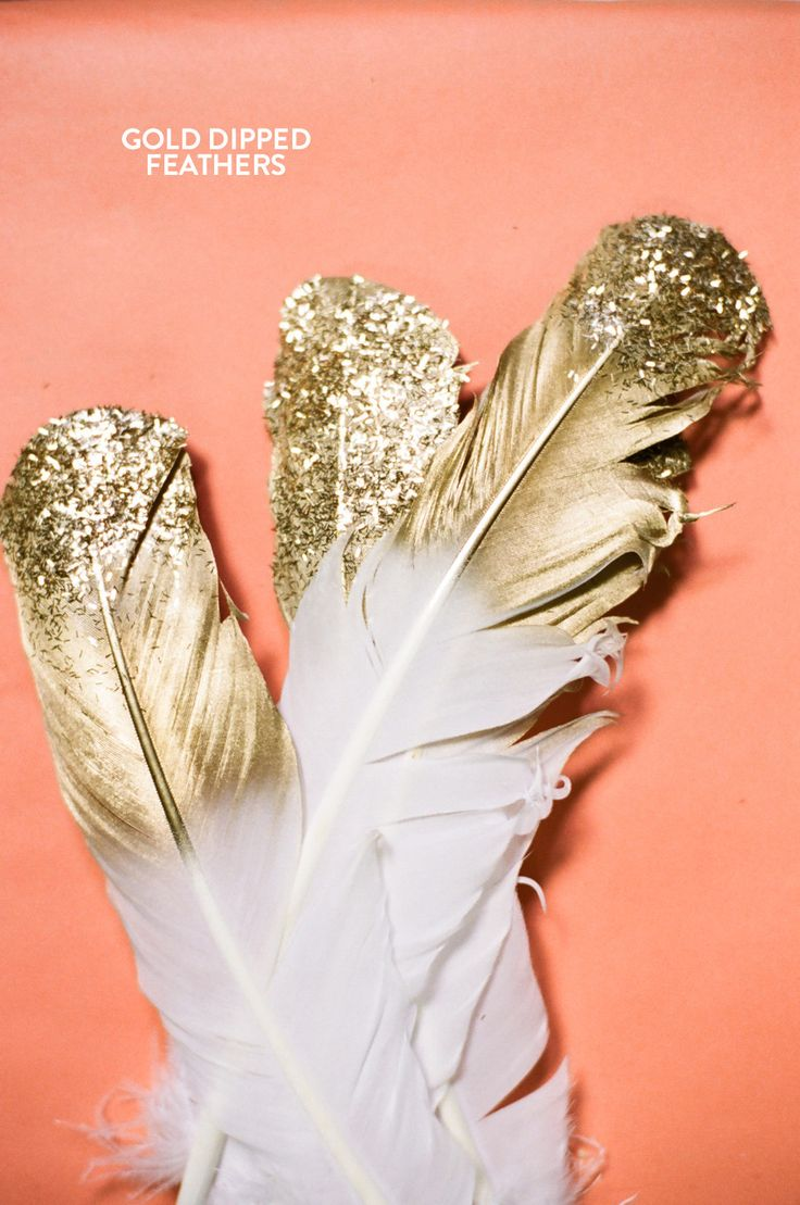 gold dipped feather