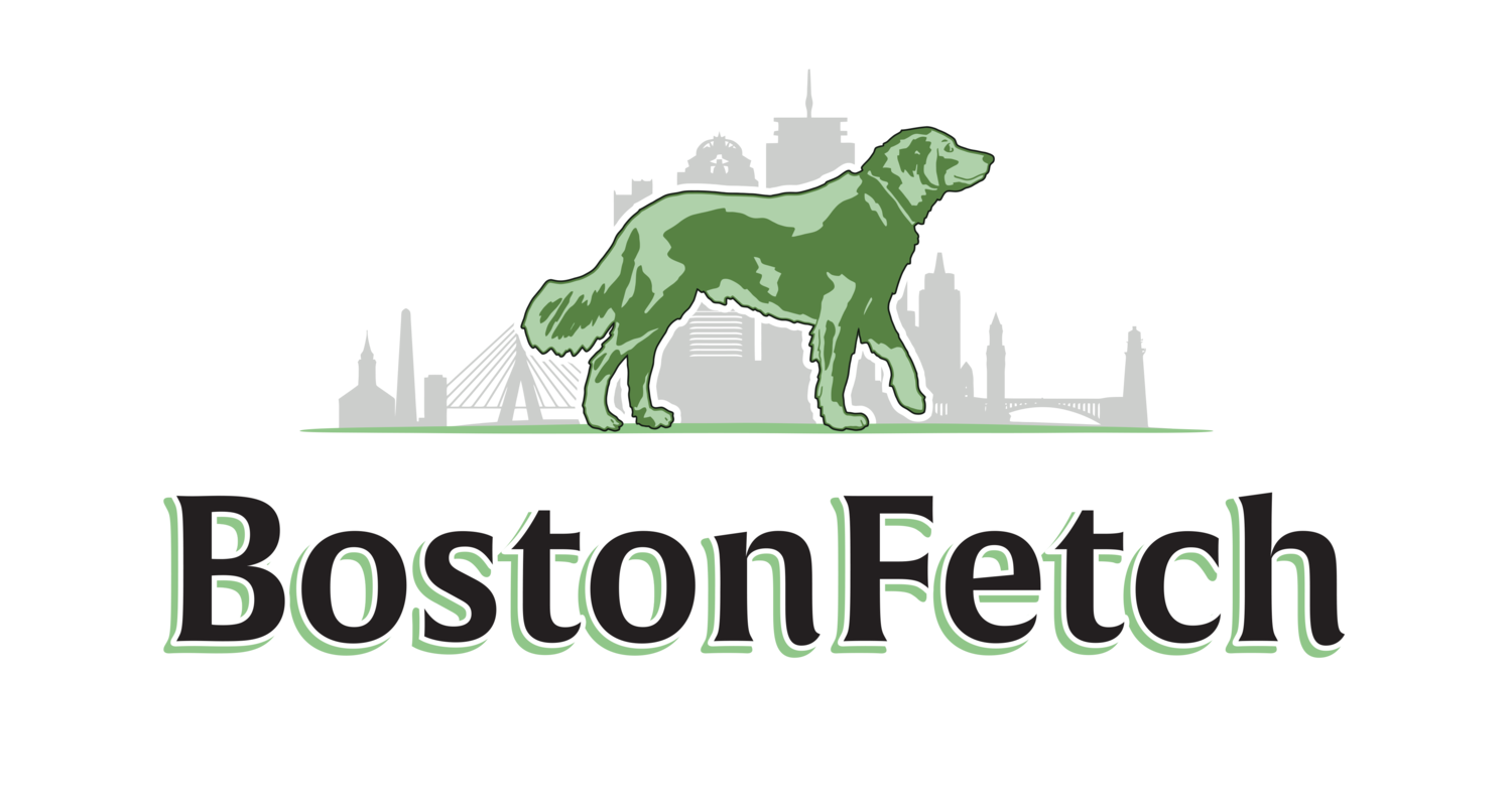 Dog Walking, Pet Sitting and Dog Training in Jamaica Plain