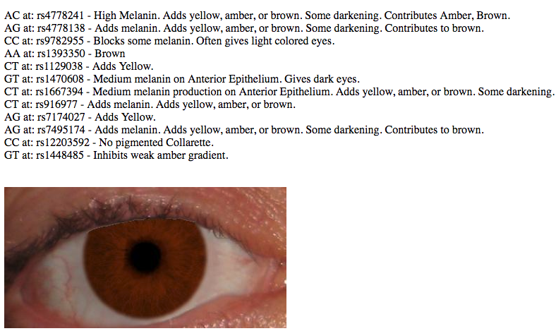 my eye color results