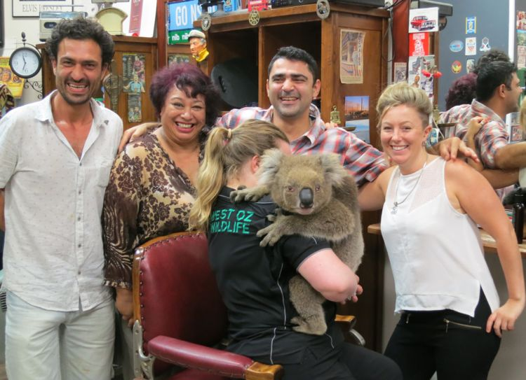 Yes, there was a Koala in Norm Wrightson's Hairway!