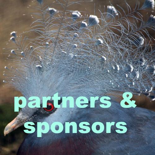 partners sponsors.jpg