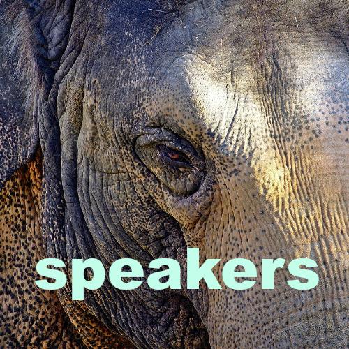 Speakers button.jpg