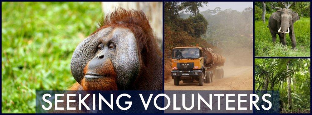 Volunteer Banner.jpg