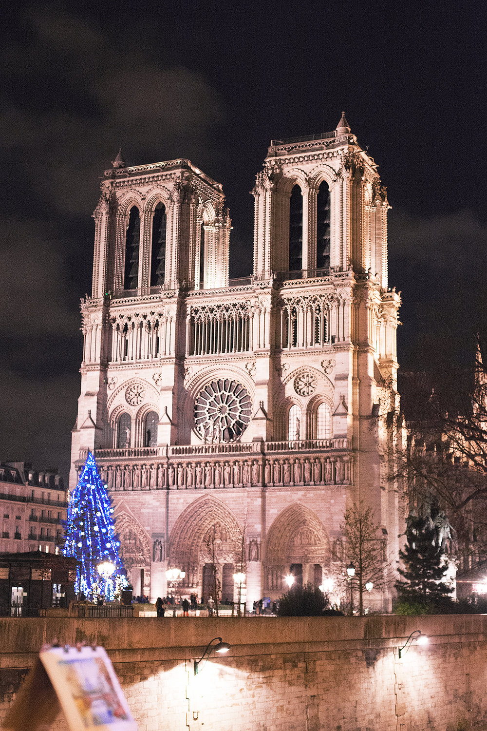 The Notre Dame at night