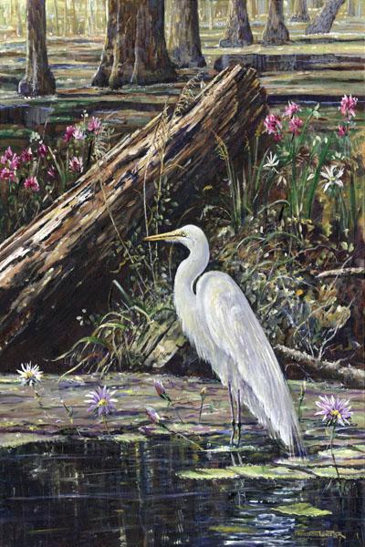 Marsh Egret.jpg