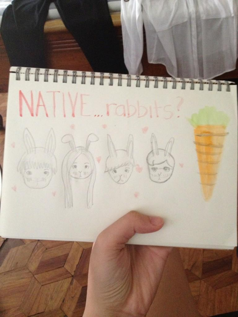 NiNa Rabbits.jpeg