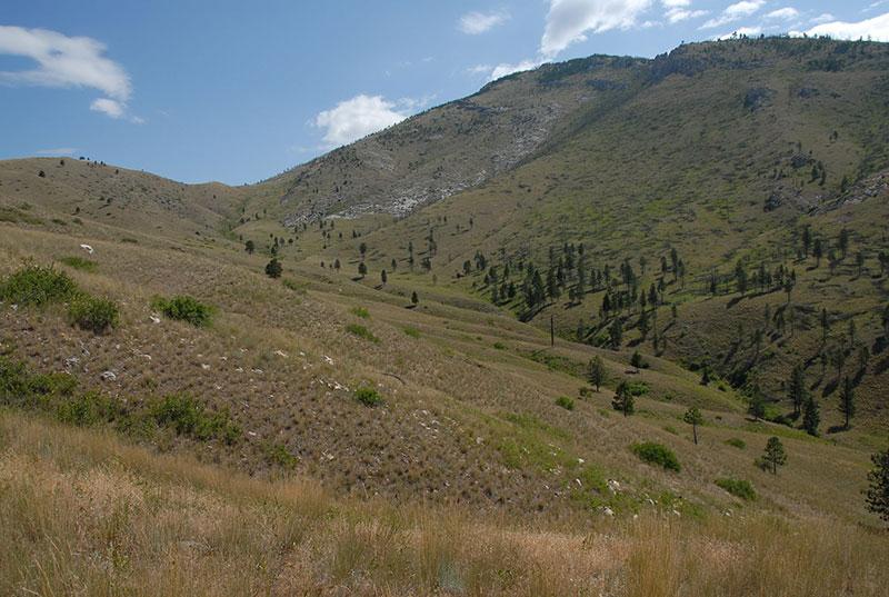 Wide view of Mann Gulch