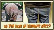 Do you have an Elephant Butt?