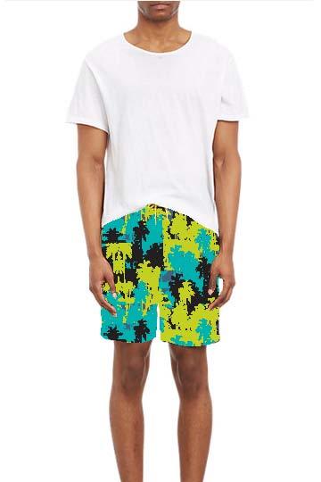 board shorts.jpg