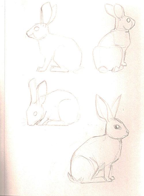 bunnies7.jpg