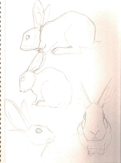 bunnies4.jpg