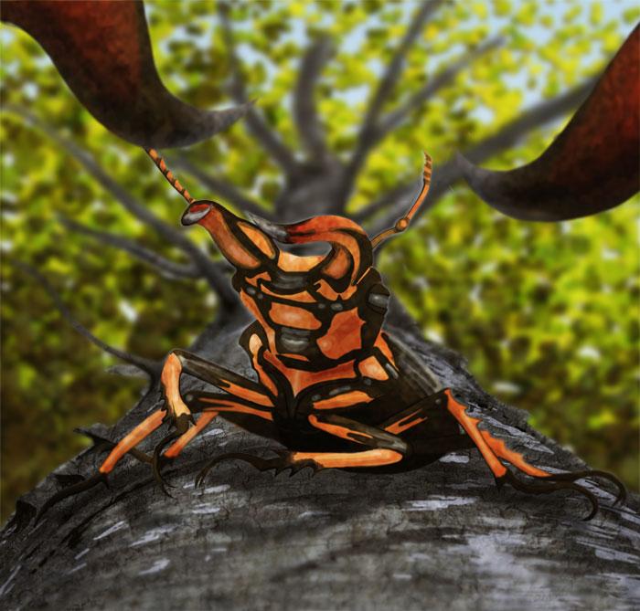stag-beetles