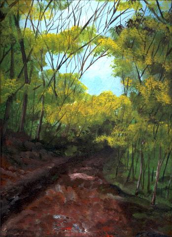 Schenley Park Trail