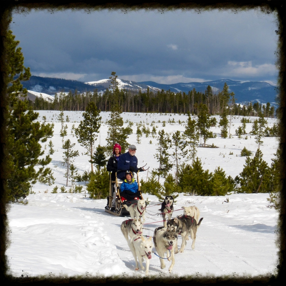 Snow Mountain Ranch chaplain and dog musher   Steven Peterson rounds the bend with his team of canine athletes.   Photos by Heather Mundt