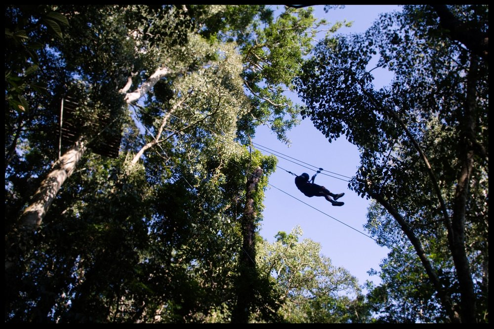 A guest zip-lining at Parque de Aventura Las Nubes, located on the Finca Las Nubes property.  Photo by Michael Mundt