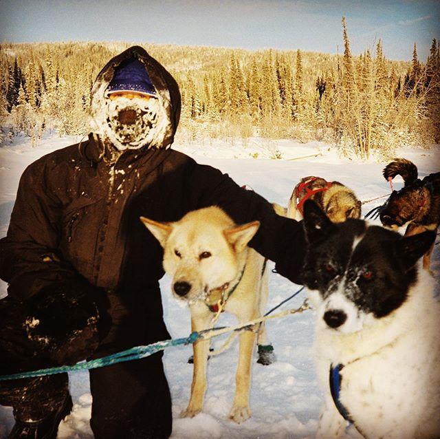 That time in 2002 when I got to drive a dog sled in #denalinationalpark in -34 degrees. That's still 20 degrees warmer than some #polarvortex2019 estimates! #callofthewild #alaskasleddog #tbt #healyalaska #alaskatravel