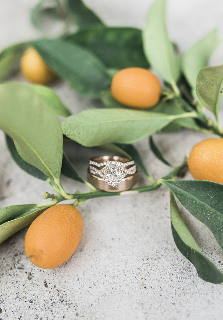White apron chef fresno - Rachel And Jordan Married Wolf Lakes Sanger Ca Ellie Koleen Photography Fresno Wedding Photographer