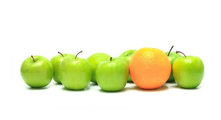 Apples and Oranges.jpg
