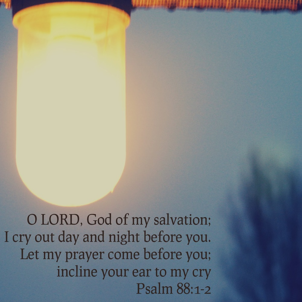 cry out day and night