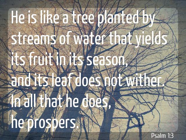 Psalm+1.jpg