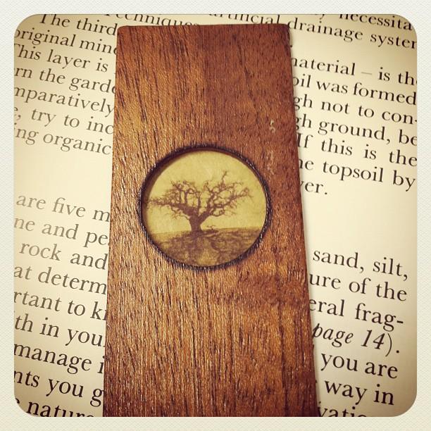 My recycled wooden bookmark! (Pris avec instagram)