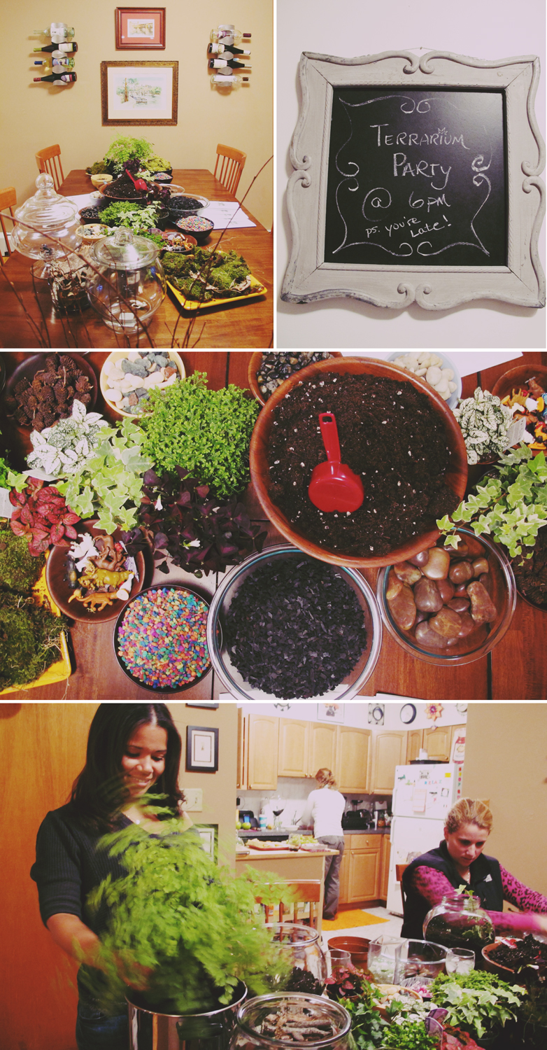 Soooo….Last weekend we had a terrarium party! Wine, cheese, and plants. What could be better?