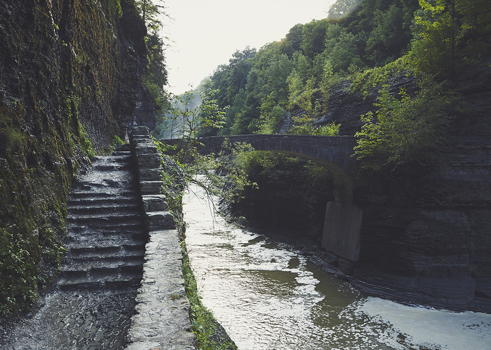 140814_Letchworth22web.jpg