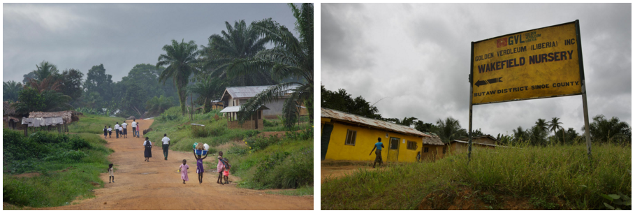 A view of Butaw, left. A sign guides visitors to the Golden Veroleum Liberia nursery. Photos by Kuni Takahashi.
