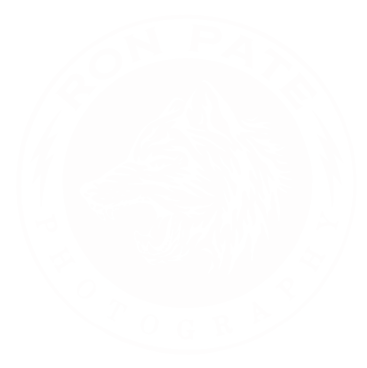 Ron Pate Photography