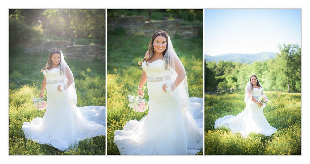 I couldn't have designed a more beautiful spot for Meagan's portraits if I tried.  These buttercups in the middle of the horse pasture were absolutely perfect!