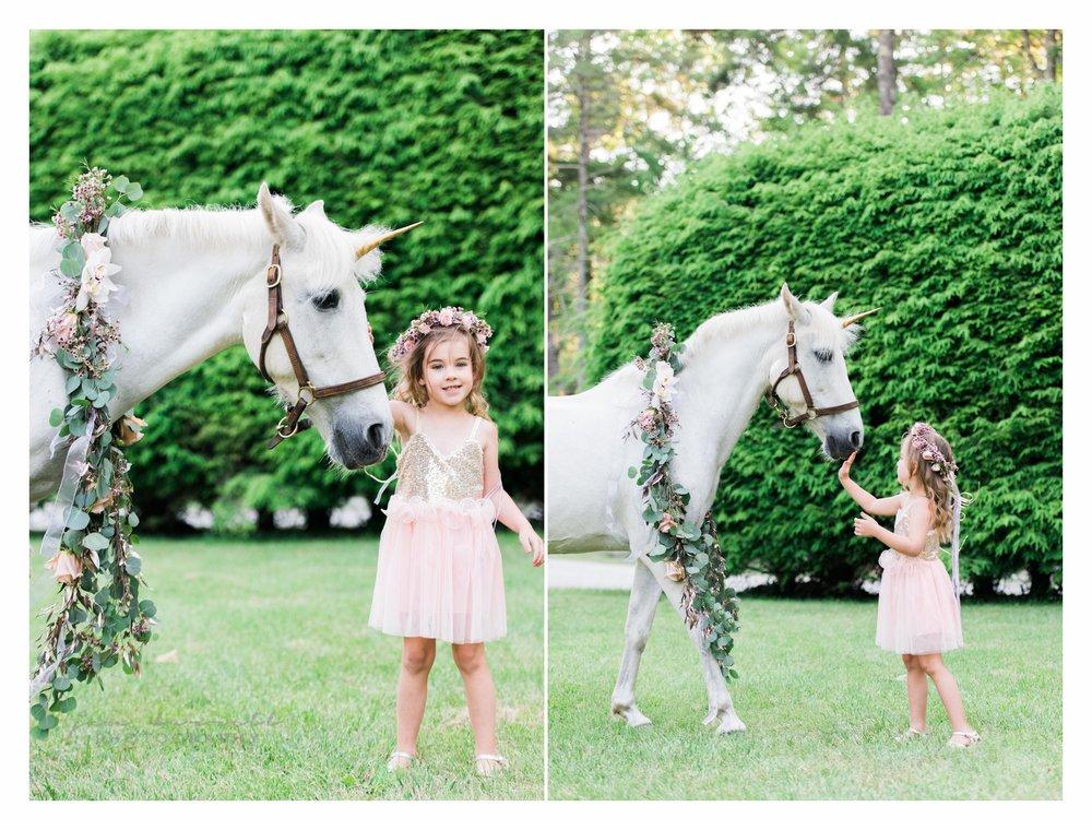 Unicorns and Fairies 2.jpg