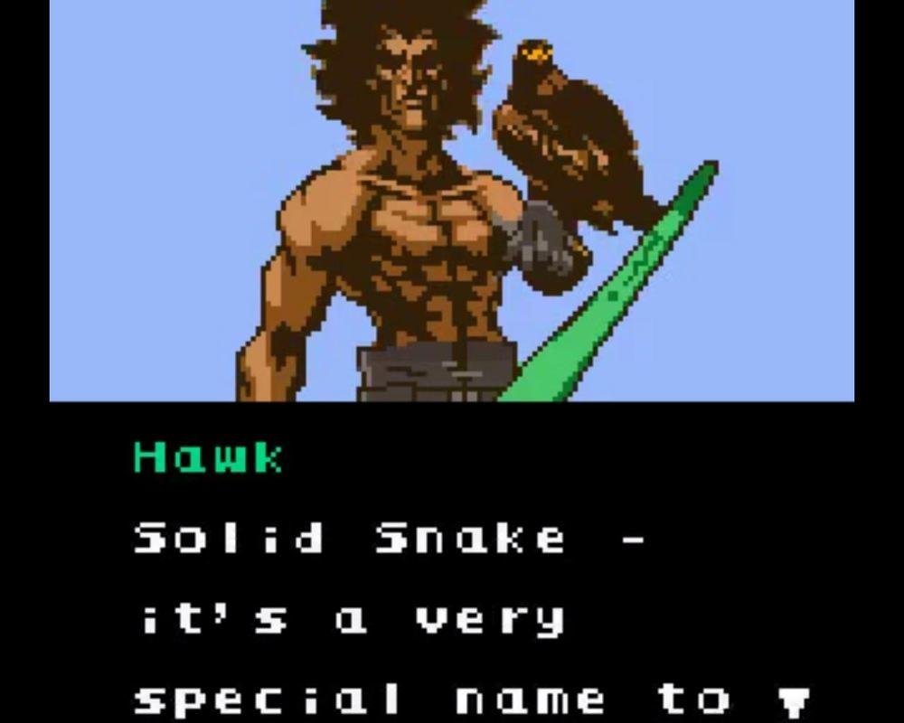 Dude's got boomerangs and birds.
