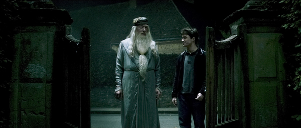 The only smart thing Voldemort ever did was fear this badass.