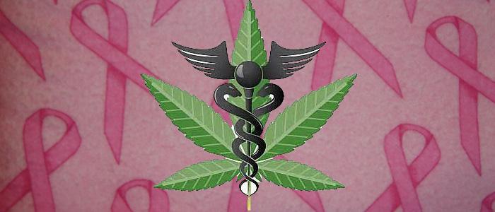 treating breast cancer symptoms with medical marijuana