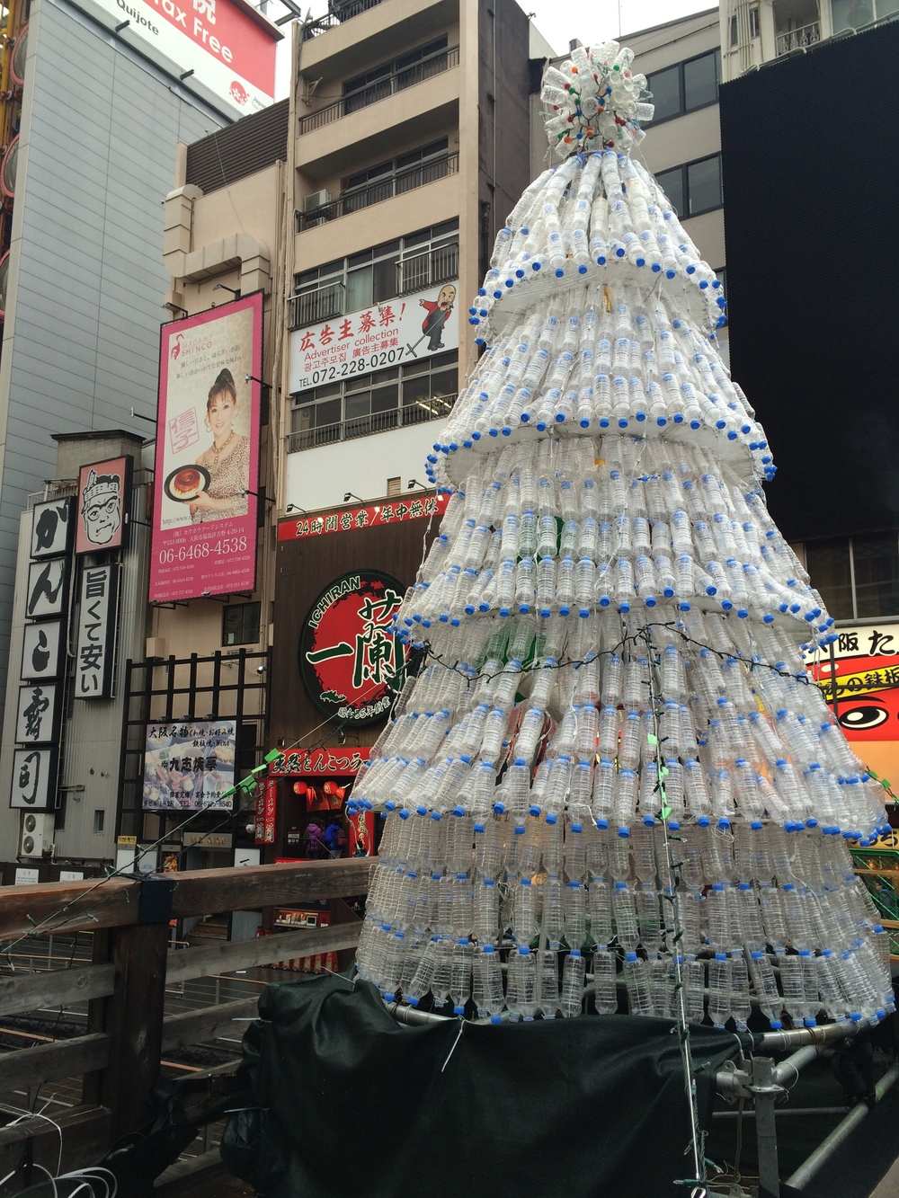 pet bottle tree