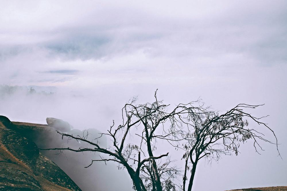 mount-buffalo-victoria-fog-stuart-michael.jpg