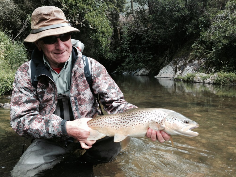 New Zealand brown trout fly fishing