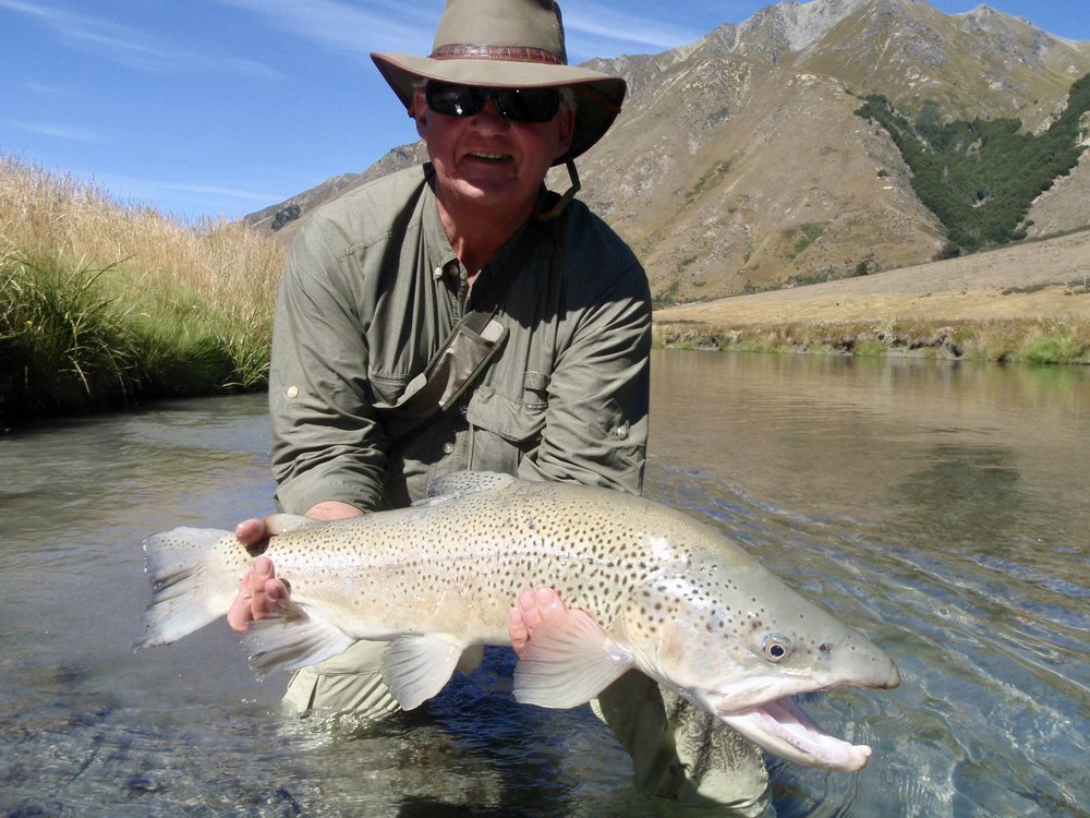 Big New Zealand brown trout fly fishing