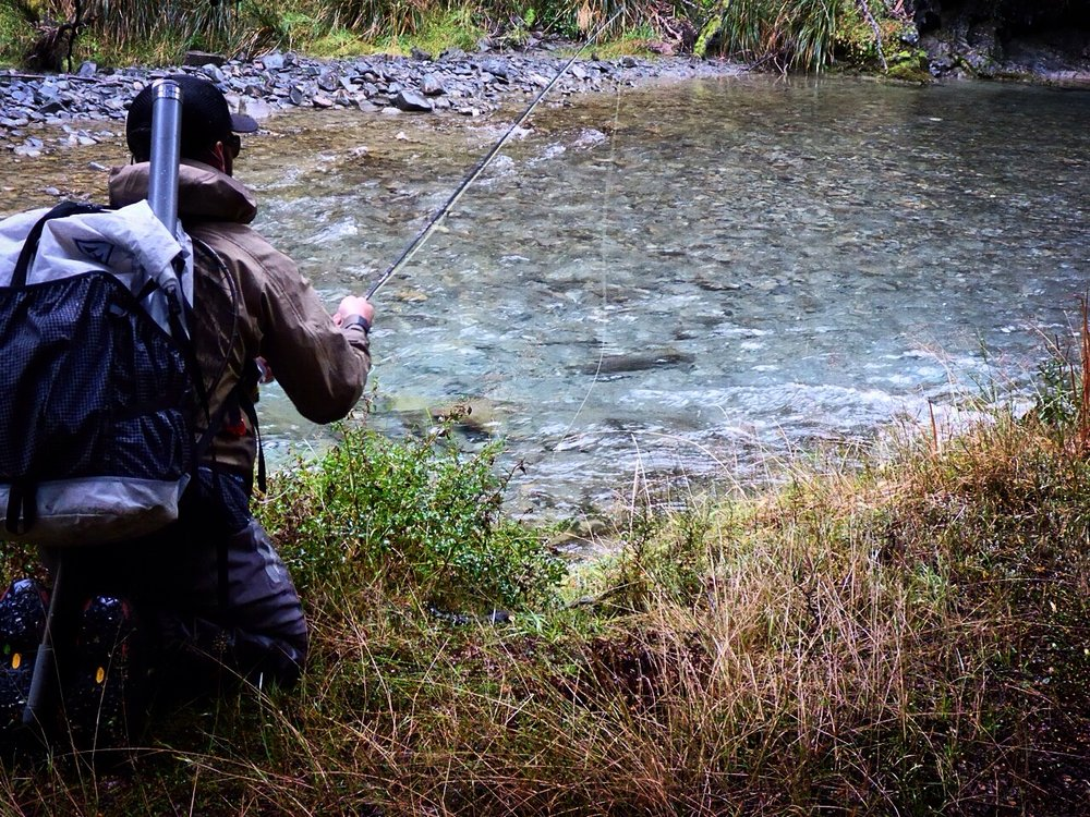 Trout hunting New Zealand