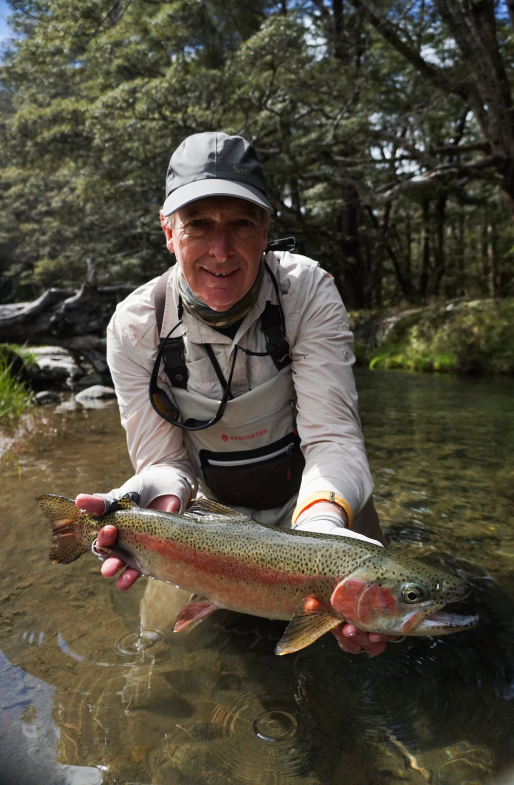 Rainbow trout New Zealand fly fishing