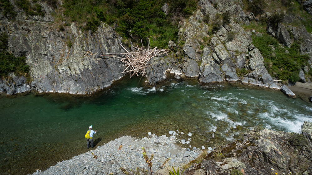 Gorge fishing New Zealand