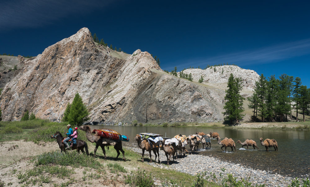 Mongolia headwaters fly fishing expedition camels and horses