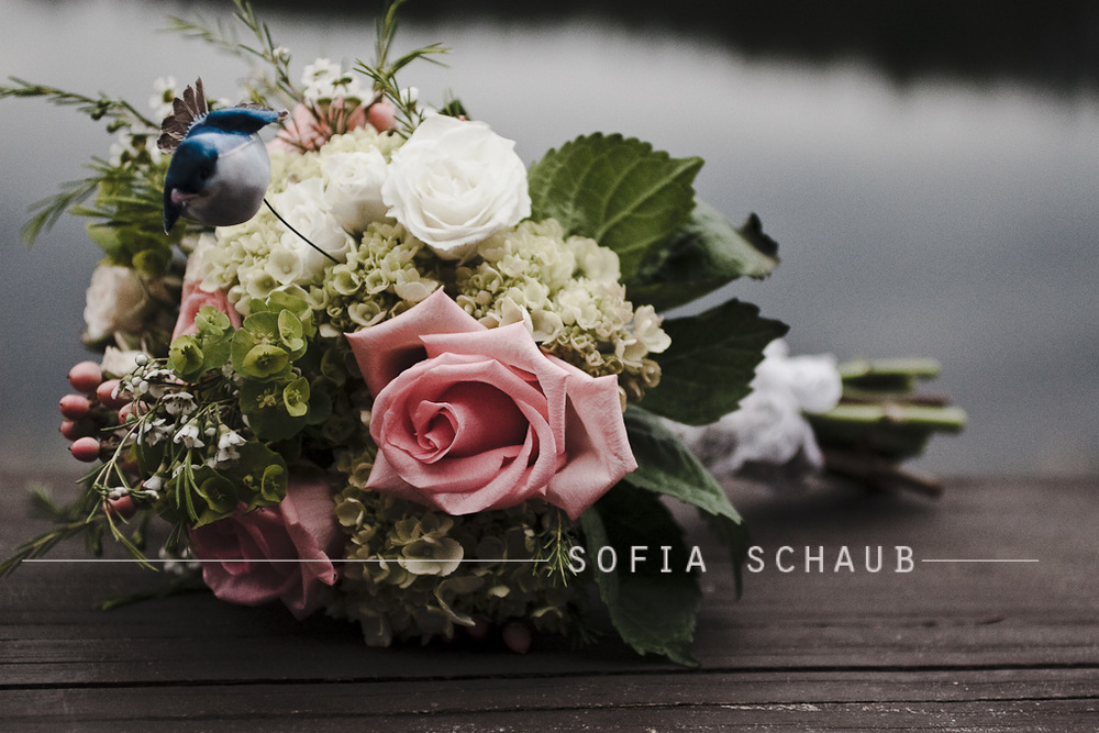 sofia-14.jpg